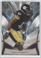 Troy Polamalu /162