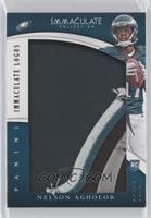 Nelson Agholor /17