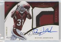 David Johnson #/49