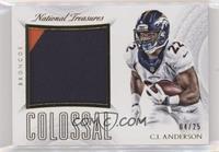 C.J. Anderson #/25