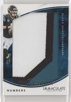 Blake Bortles [EX to NM] #/10