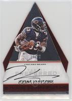 Panini's Choice - Jeremy Langford #/49