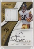James Conner #/30