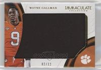 Wayne Gallman /12