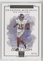 Brandon Marshall /75
