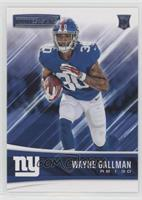 Rookies - Wayne Gallman