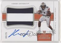 Materials Signatures - Kerryon Johnson #/25