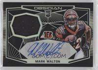 Mark Walton #/100