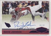 David Johnson #/15