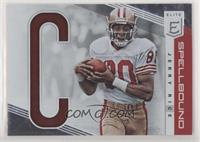 Jerry Rice /299