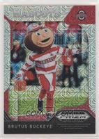Mascots - Brutus Buckeye #/49