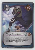 Tiny Reinforcer