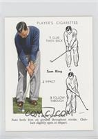 No. 6 Iron, Chip Shot- Sam King