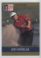 Joey Sindelar