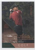 Tiger Woods /2002
