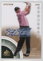 Steve Stricker /100