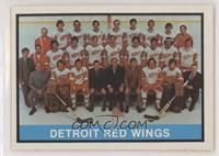 Detroit Red Wings Team [PoortoFair]