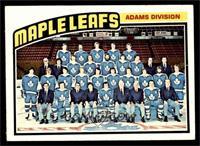 Toronto Maple Leafs Team [EX]