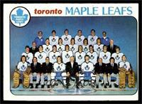 Toronto Maple Leafs Team [FAIR]