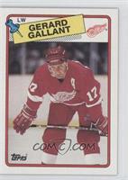 Gerard Gallant