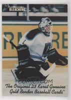 Manon Rheaume (Error on front of card: Gold Border Baseball Cards, Hockey Cards…