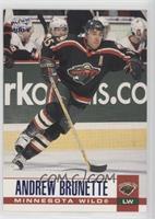 Andrew Brunette #/250