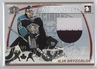Ilja Bryzgalov /1