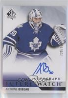 Future Watch Autographs - Antoine Bibeau [EX to NM] #/999