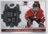 Heir to the Ice - Alexandre Carrier