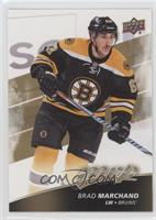 High Series - Brad Marchand