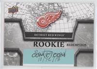 Detroit Red Wings [BeingRedeemed]