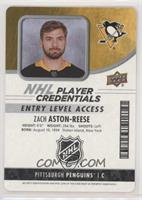 Entry Level Acces - Zach Aston-Reese