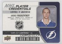 Level 1 Access - Andrei Vasilevskiy