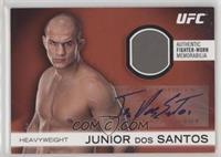 Junior Dos Santos /8