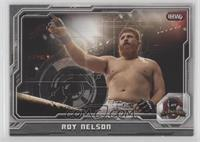 Roy Nelson #/188