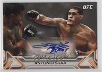 Antonio Silva /225