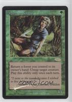 Quirion Ranger (Foil DCI Stamp)