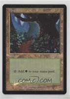 Forest (Arena Stamp Foil)