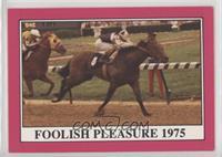 Foolish Pleasure