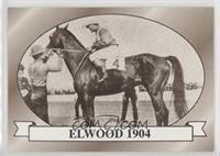 Elwood 1904