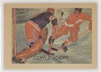 Hockey's Hardy Perennials