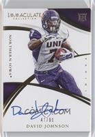 Rookie Autographs - David Johnson /99