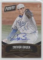 Trevor Bauer