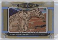 Tier 1 - Chalicotherium