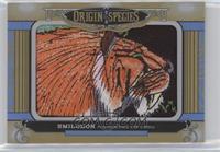Tier 2 - Smilodon