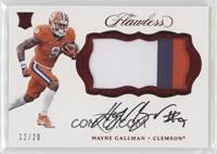Wayne Gallman /20