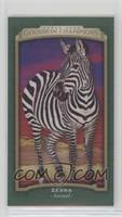 Zebra #/25