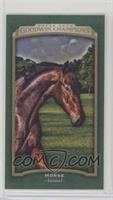 Horizontal - Horse #/25