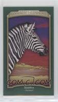 Horizontal - Zebra #/25