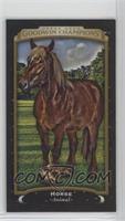 Horse #/17